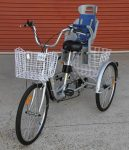 Adult Tricycle with Child Seat