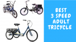 Best Adult Tricycle 3 Speed