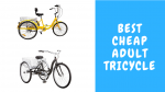 Best Cheap Adult Tricycle