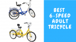 Best Adult Tricycle 6 Speeds