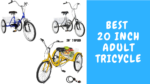 Best 20 Inch Adult Tricycle