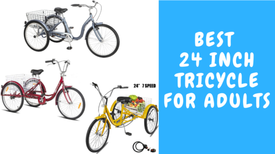 Best 24-Inch Tricycle for Adults