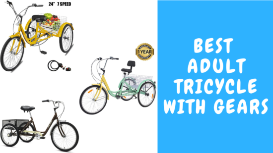 Best Adult Tricycle with Gears